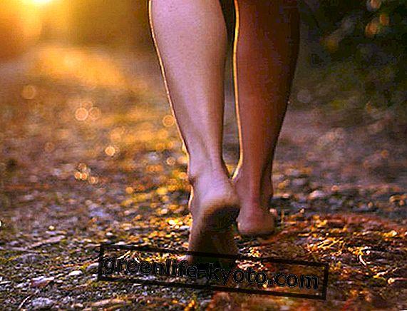 Caminar: por qué, cómo y dónde.