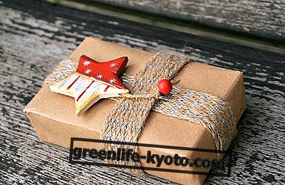 Ecological gift packages