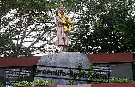 Swami Vivekananda, utemeljitelj misije Ramakrishna