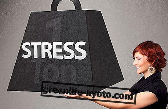 스트레스에 대한 전략과 자연 요법