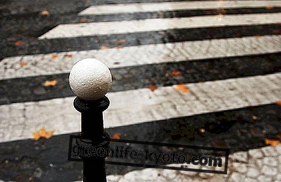Recupera la ciudad con los deportes urbanos.