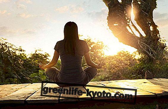 Meditasi, bagaimana mendekati praktik ini