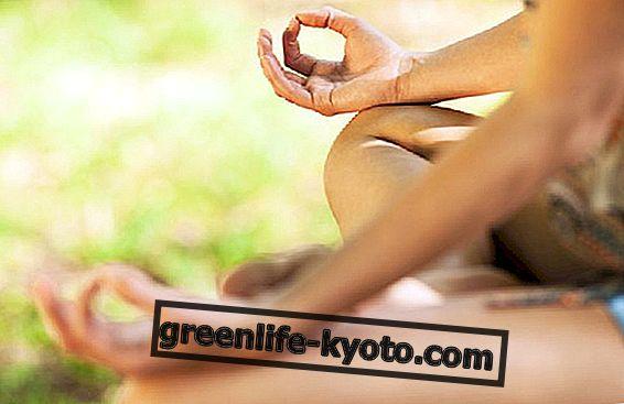 Experience training as a Zen meditation