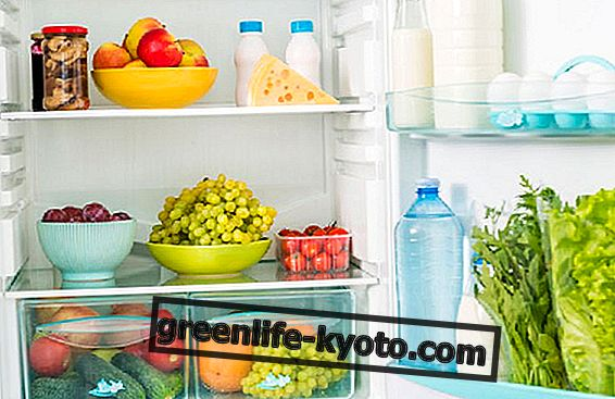 Ζώντας χωρίς ψυγείο: την εμπειρία της Άννας Caico