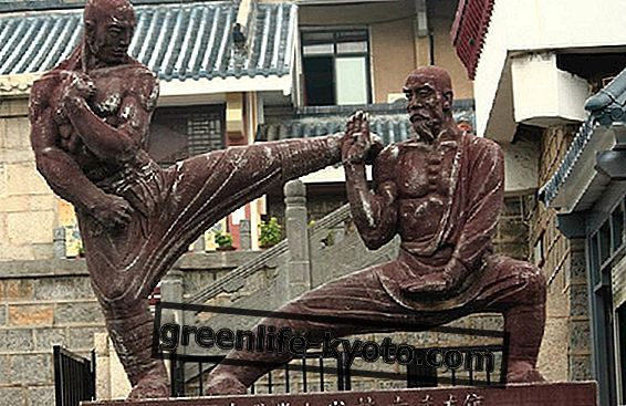 Shou Dao, un enfoque diferente a las artes marciales.