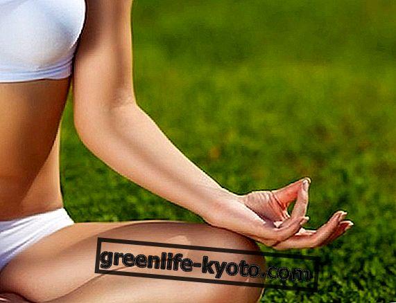 Заземена с йога