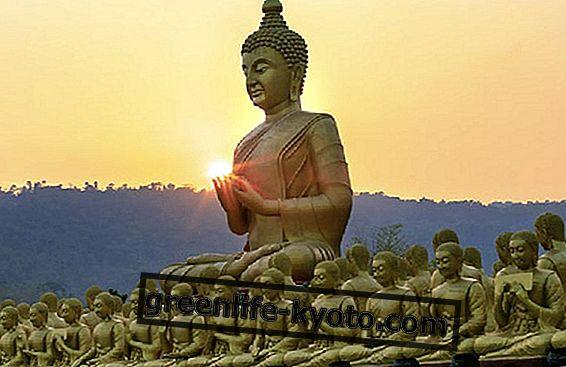 Vipassana: orígenes y beneficios para el cuerpo y la mente.