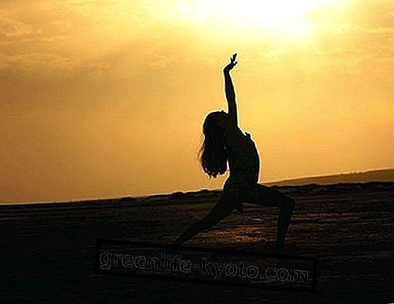 Tanec a bojové umenie: aký odkaz?