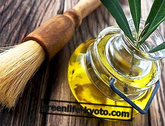 Olijfolie voor verzorging van huid, haar en nagels