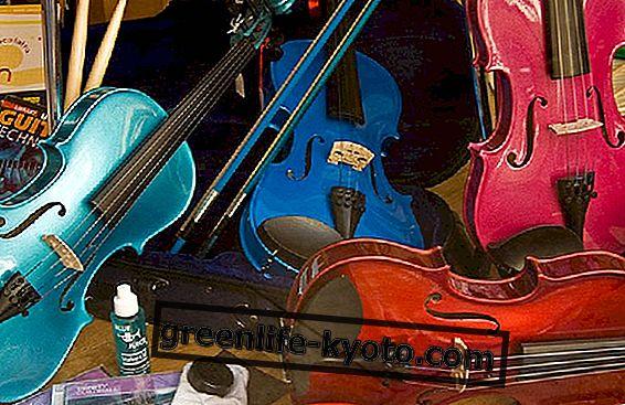 Gehandicapte kinderen en muziek op school