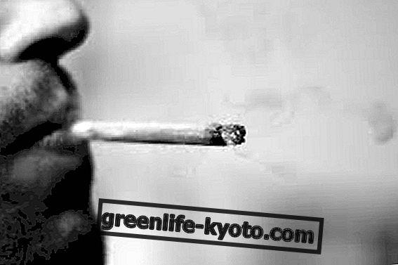 Cigarette beskadigelse