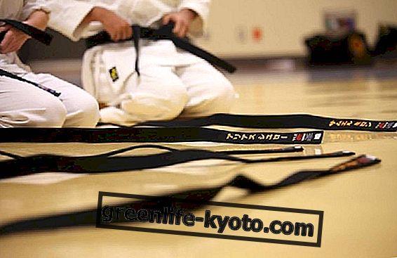 Karate: praktikos kilmė ir nauda