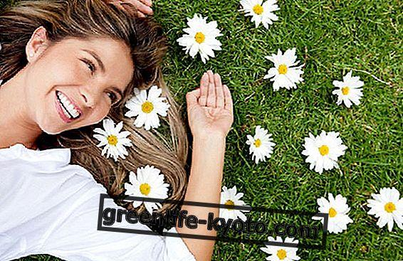 Herbal hår service