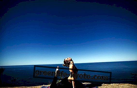 Открийте интегрална йога чрез Сатпрем
