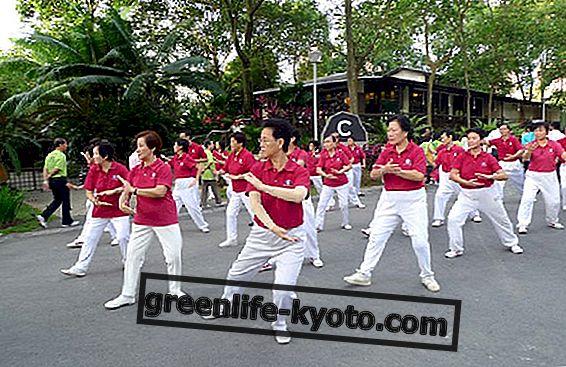 Expansion och kunskap vid Taiji Festival 2012