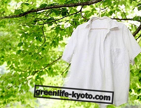 अपने लिए पर्यावरण के अनुकूल कपड़े धोने का डिटर्जेंट कैसे बनाएं