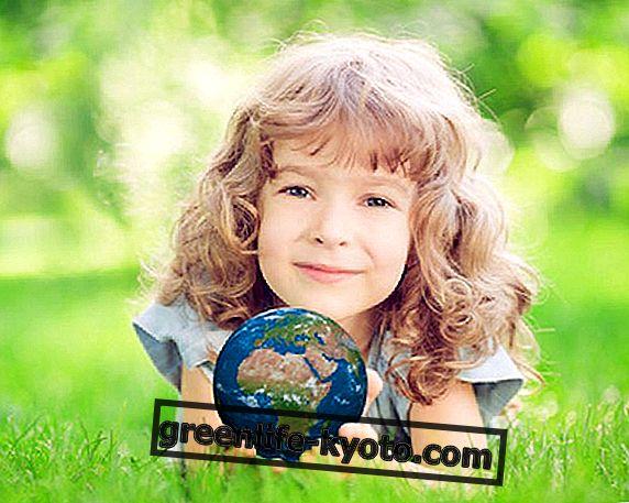 28 de marzo de 2015: es la Hora de la Tierra.