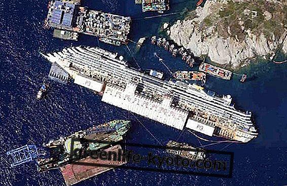 Costa Concordia i szkody dla środowiska
