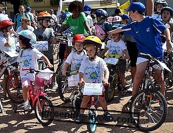 Den barnestørrede cykel er lavet i Italien
