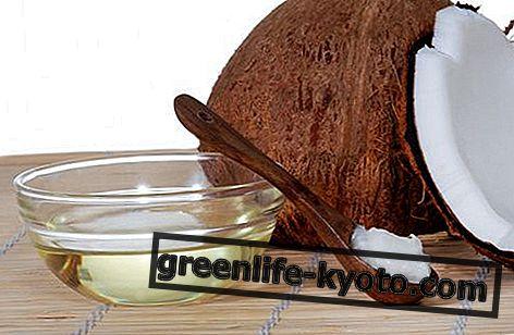 Kokosų aliejaus savybės