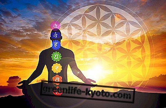 Sahaja yoga, luces y sombras sobre origen y práctica.