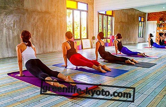 Jogas festivāls 2018: 21. jūnijā tiek svinēta Starptautiskā jogas diena