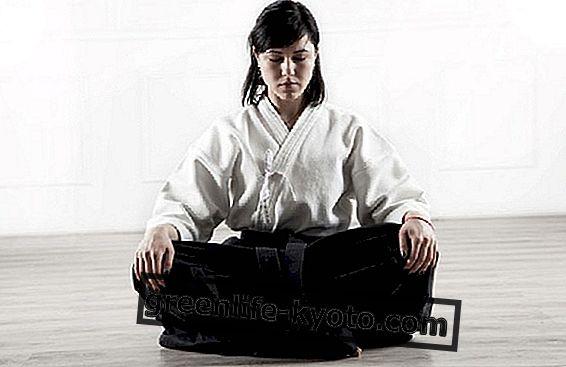 Kampfkunst: Stärke kennen und modulieren