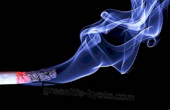 Svetovni dan brez tobaka