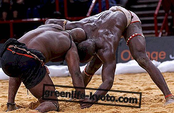 Seni mempertahankan diri Afrika