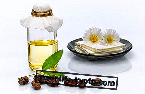 Jojoba olie, en hjælp mod pimples