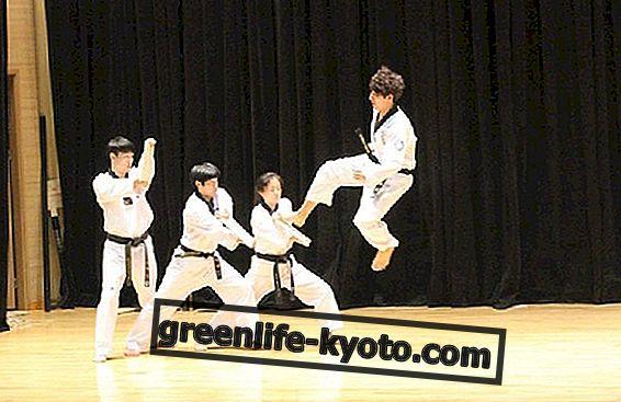 Koreanske kampsport