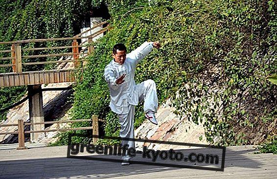 चीन में मार्शल आर्ट: उत्पत्ति, शैली और पालने।  एक, कोई नहीं और एक लाख