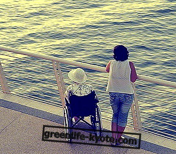 De Italiaanse gehandicaptenorganisatie