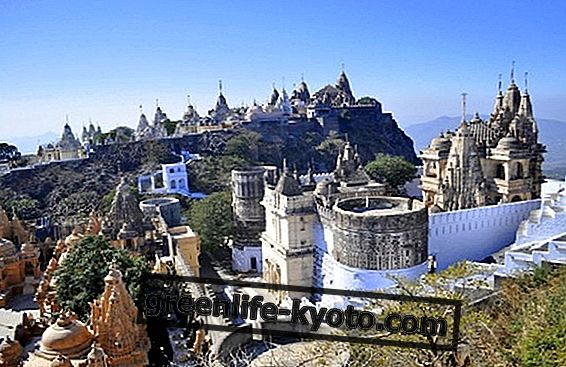 Palitana, a completely vegetarian city