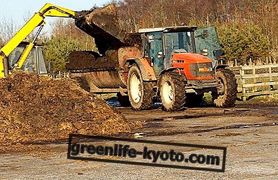ジェノバ法令と農業スラッジ