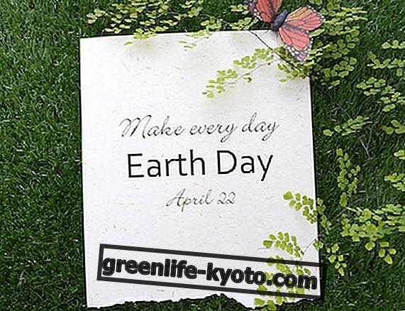 Április 22.: ünnepeljük a Föld Föld napját