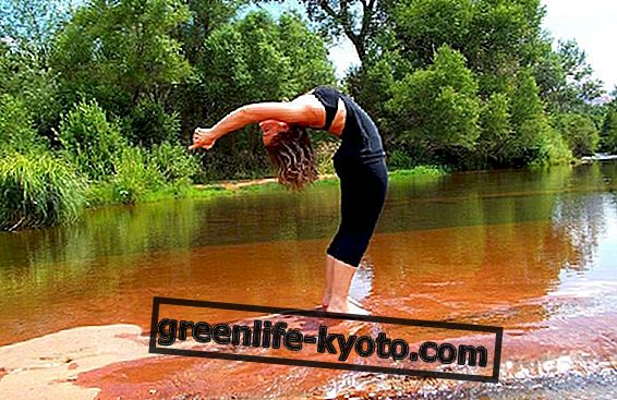 Anusara joga, daug diskutuojama stilius