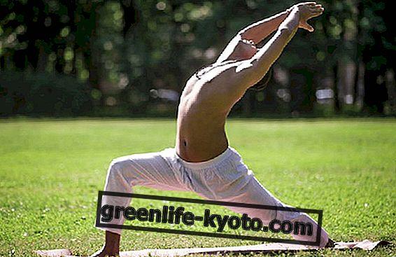 Vinyasa yoga: praksis med dynamisk yoga