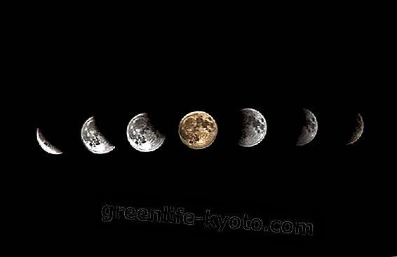 Kuu faasid ja tervis