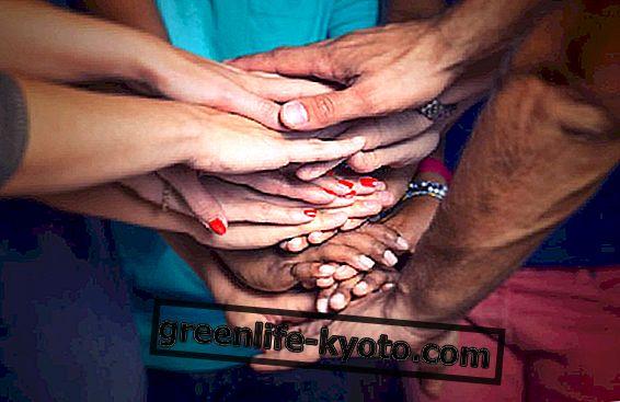 Solidarita cestování, solidarita na dovolené