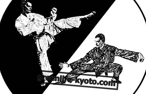 Krijgskunst en zelfverdedigingvaardigheden vandaag