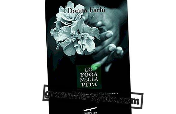 Yaşamdaki Yoga: aydınlanmış bir yaşamın günlük uygulaması
