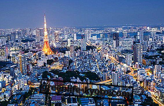 10 põhjust Tokyosse külastada