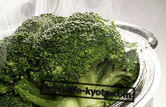 Broccoli, here's how to grow them