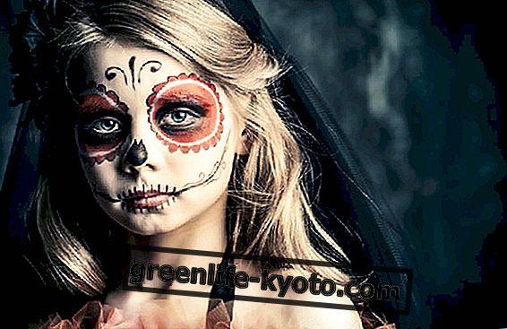 メリーハロウィーンパーティー、メキシコからのアイデア
