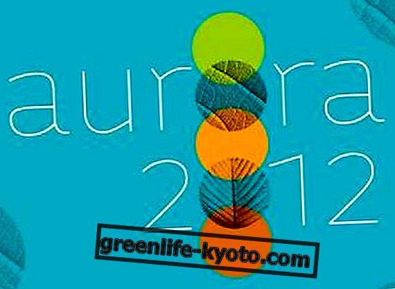 Festival Aurora 2012. Cuidado en el cambio.  Entrevista con Bebetta Campeti