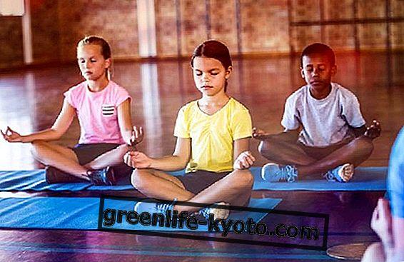 Yoga à l'école, proposition de Gentiloni