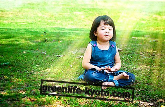 V šoli ni kaznovanja: bolje ... Meditiraj!