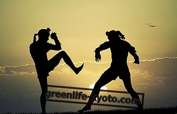 Kampfkunst in Südostasien