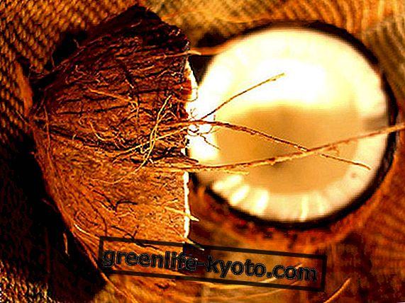 Kookospähkliõli: köögiviljajärgne päike